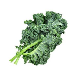 Kale Risada - unidad