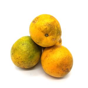 Naranjas x 3